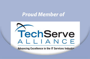 tech serve alliance